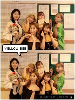 yellowbee_arirang